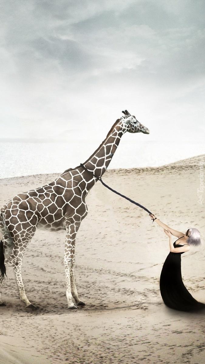 Kobieta z żyrafą na plaży w grafice