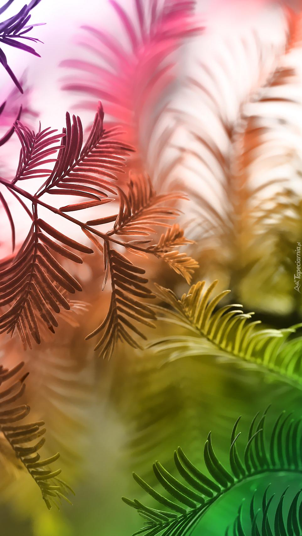 Kolorowane gałązki