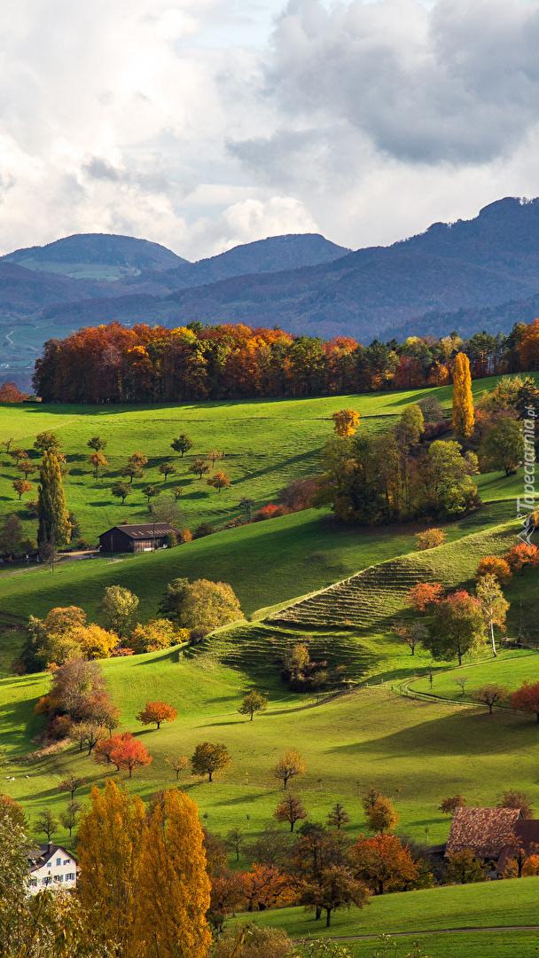 Kolorowe drzewa i domy w dolinie