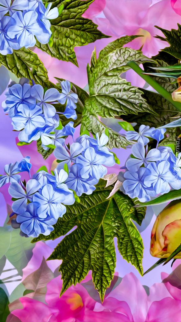 Kolorowe graficzne kwiaty