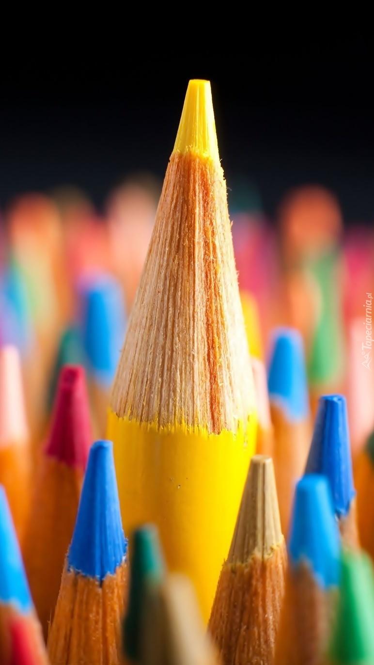 Kolorowe kredki  dla dzieci