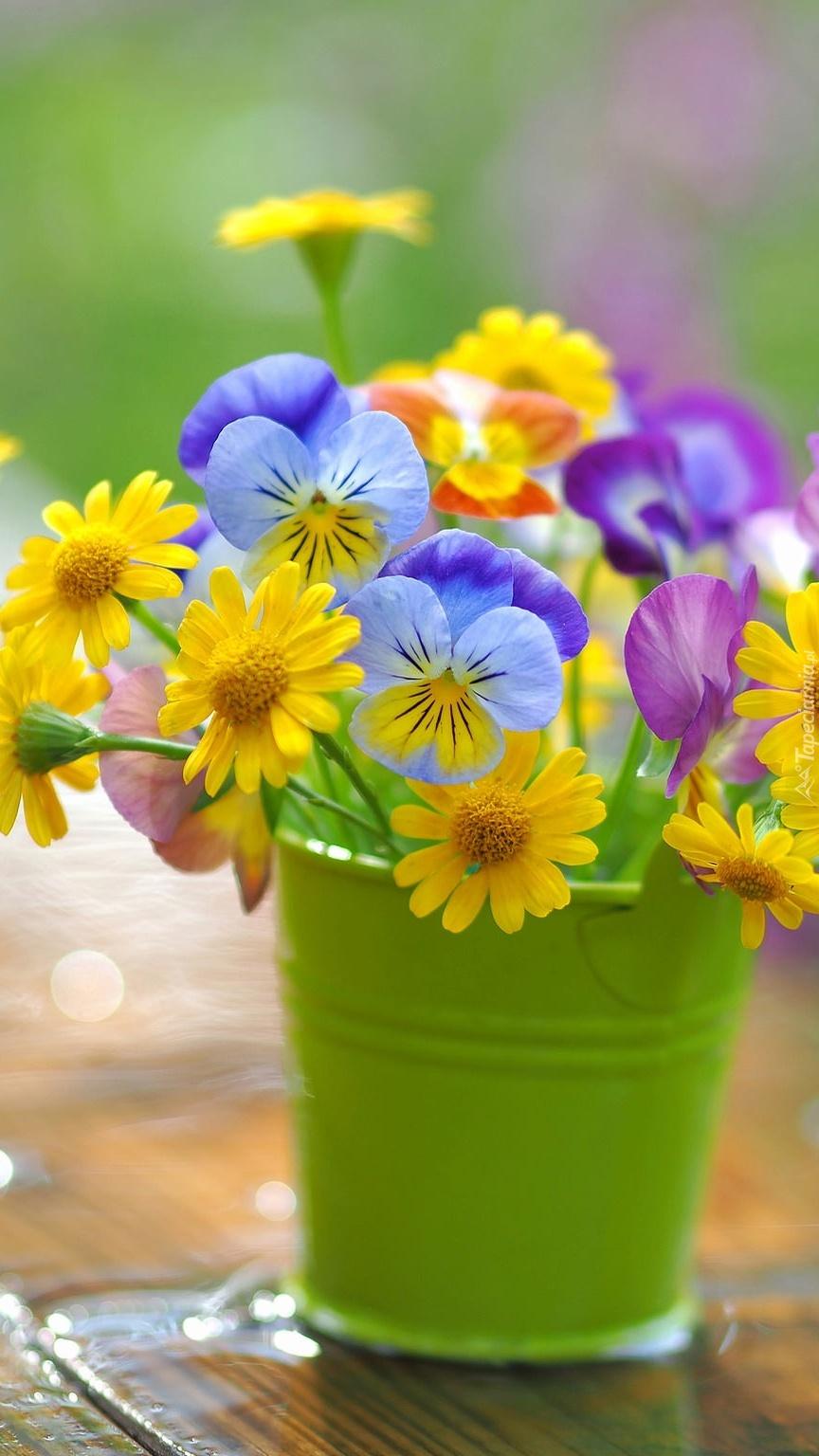 Kolorowe kwiatki w wiaderku