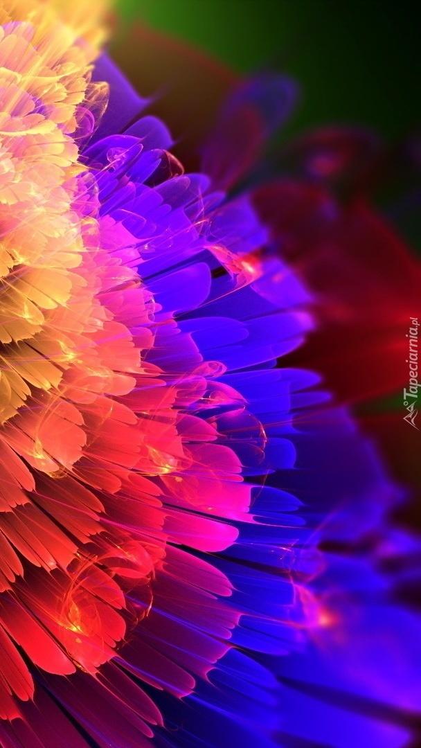 Kolorowe odcienie kwiatu w abstrakcji