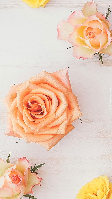 Kolorowe róże na drewnie