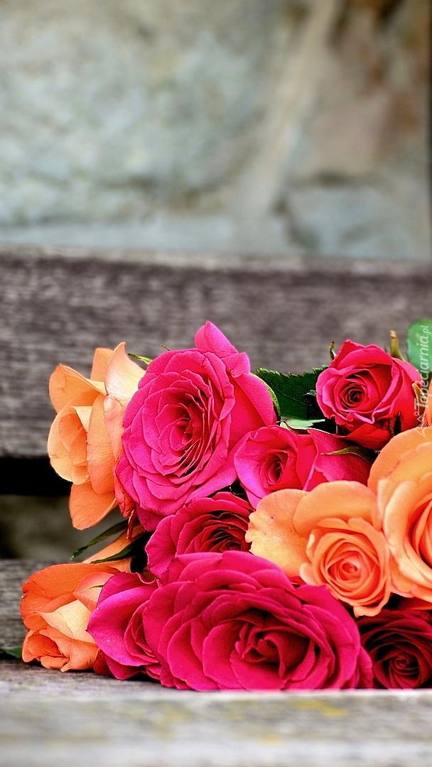 Kolorowe róże na ławce
