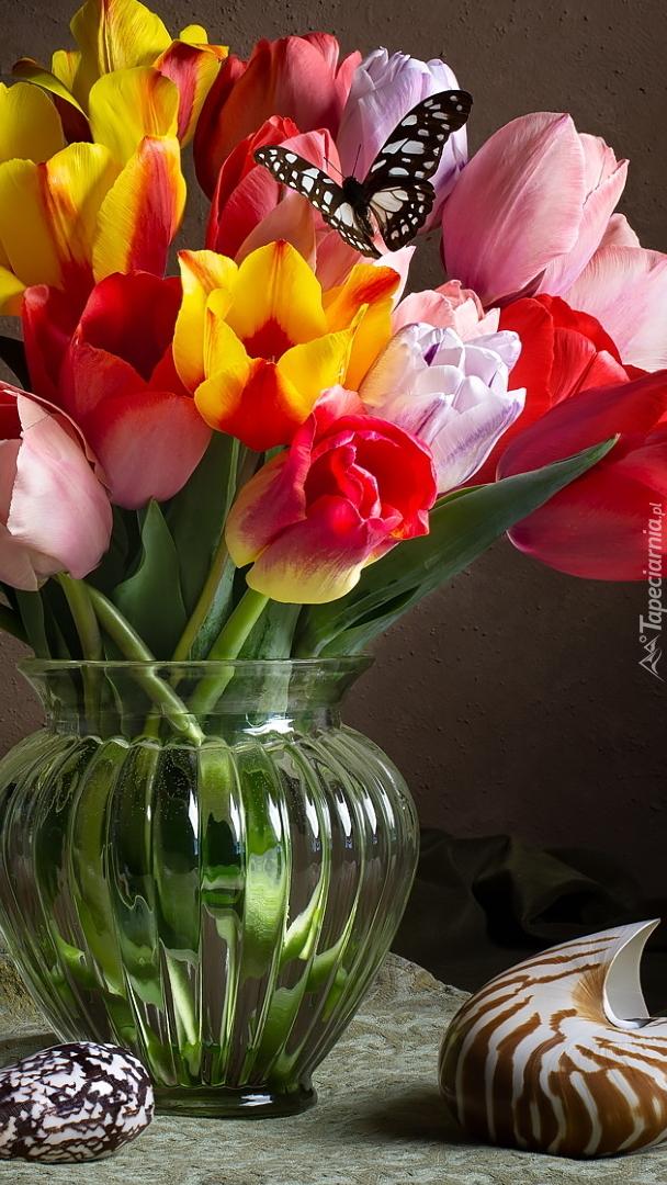 Kolorowe tulipany w szklanym wazonie