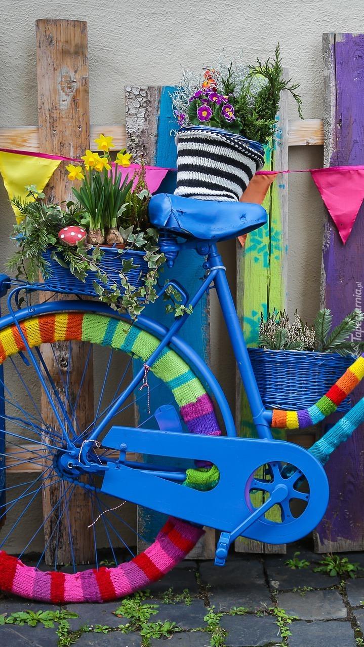 Kolorowy rower