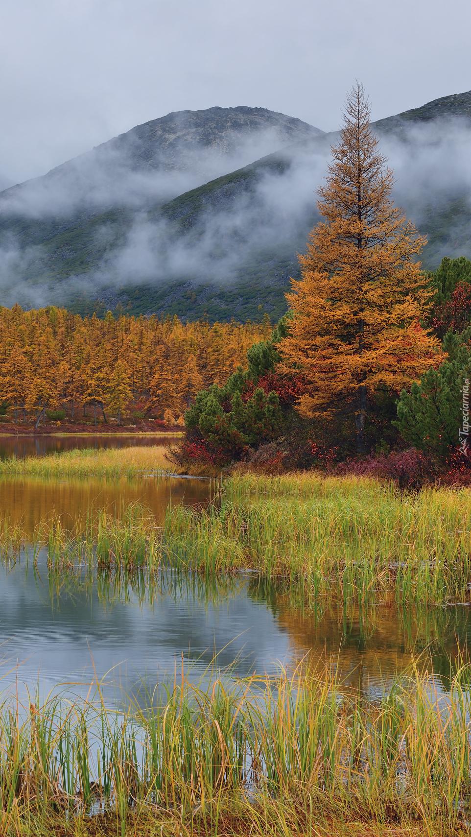 Kołyma jesienią