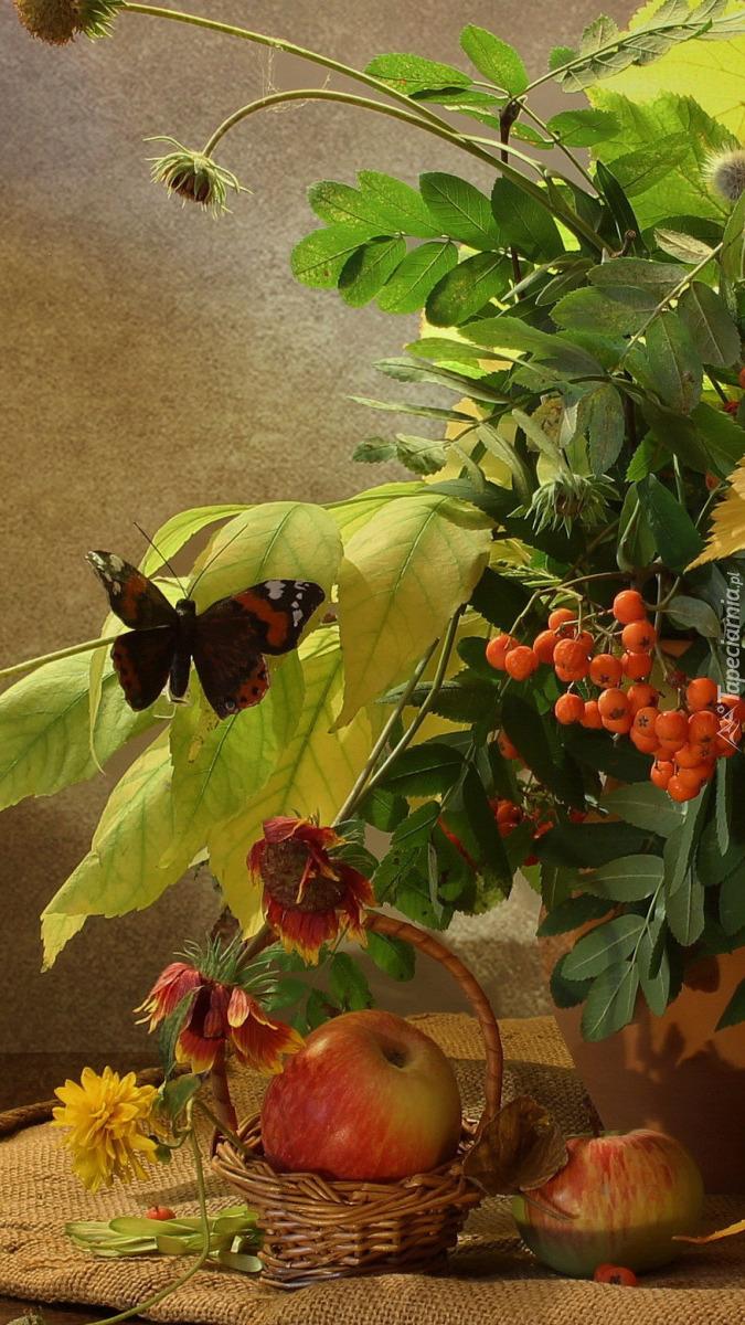 Kompozycja z motylem na liściach