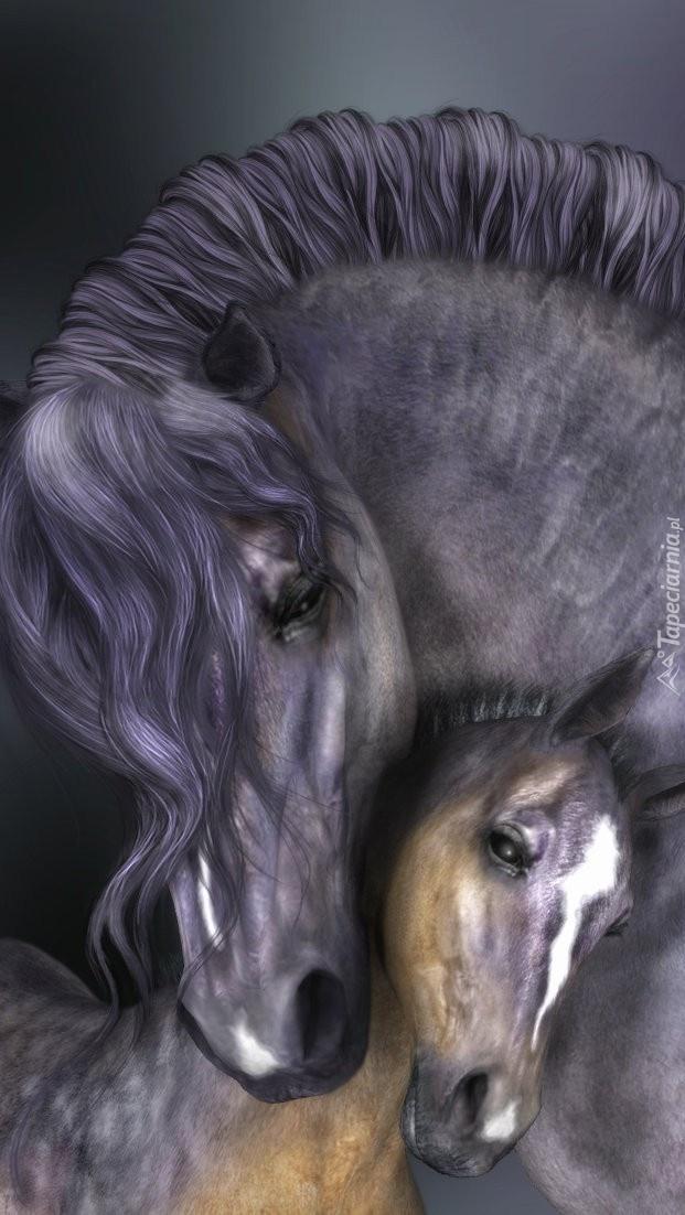 Konie przytulone do siebie