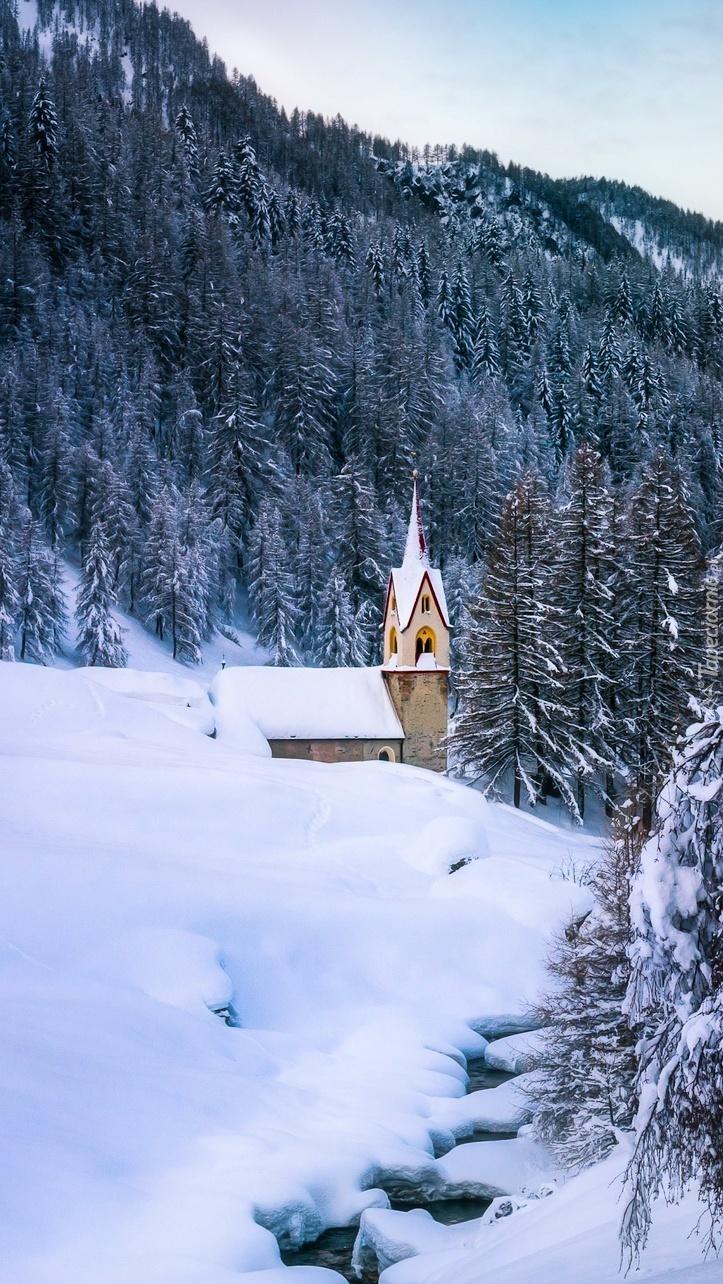 Kościół pod lasem