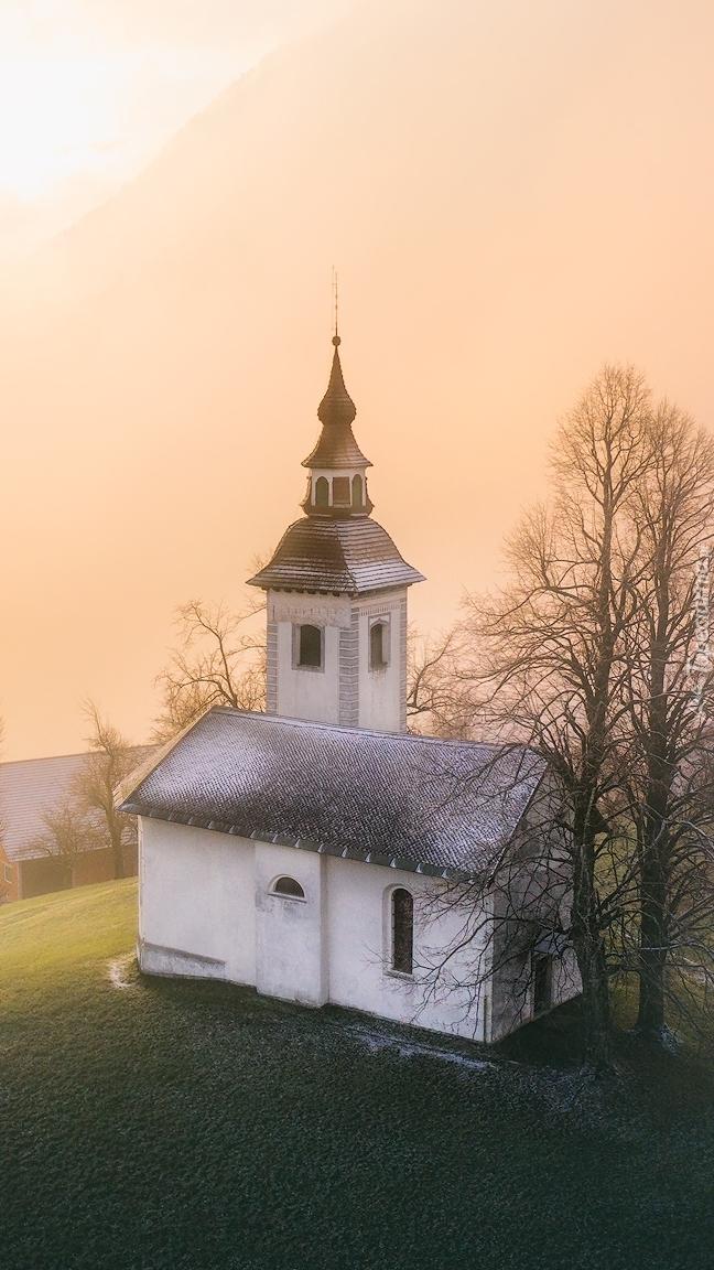 Kościół św Primusa i Felicjana
