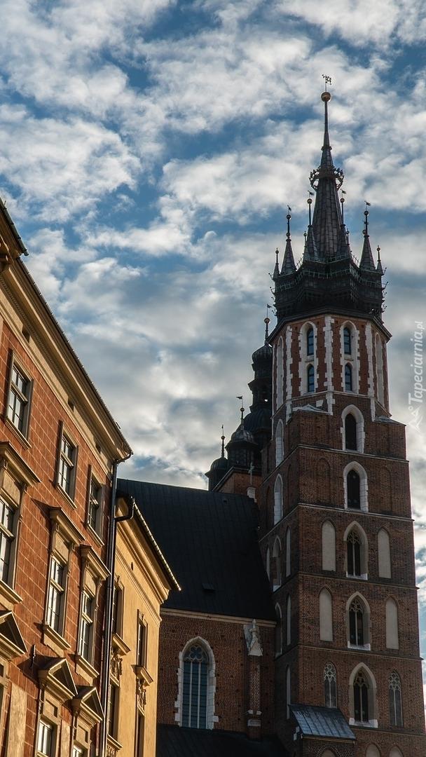 Kościół Wniebowzięcia Najświętszej Marii Panny w Krakowie