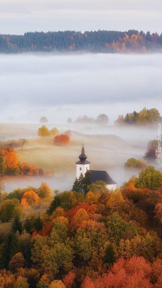 Kościół wśród jesiennych drzew