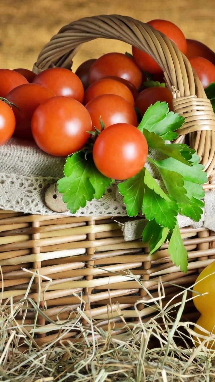 Koszyk pełen pomidorów