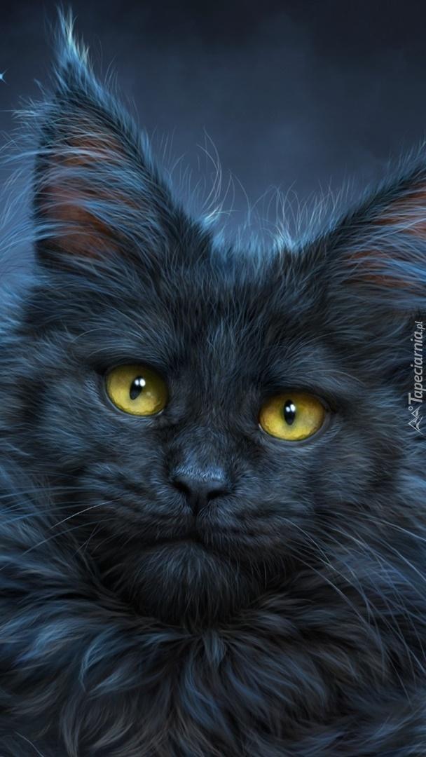 Kot długowłosy o żółtych oczach