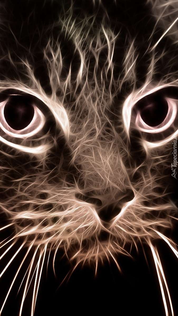 Kot w grafice fractalius