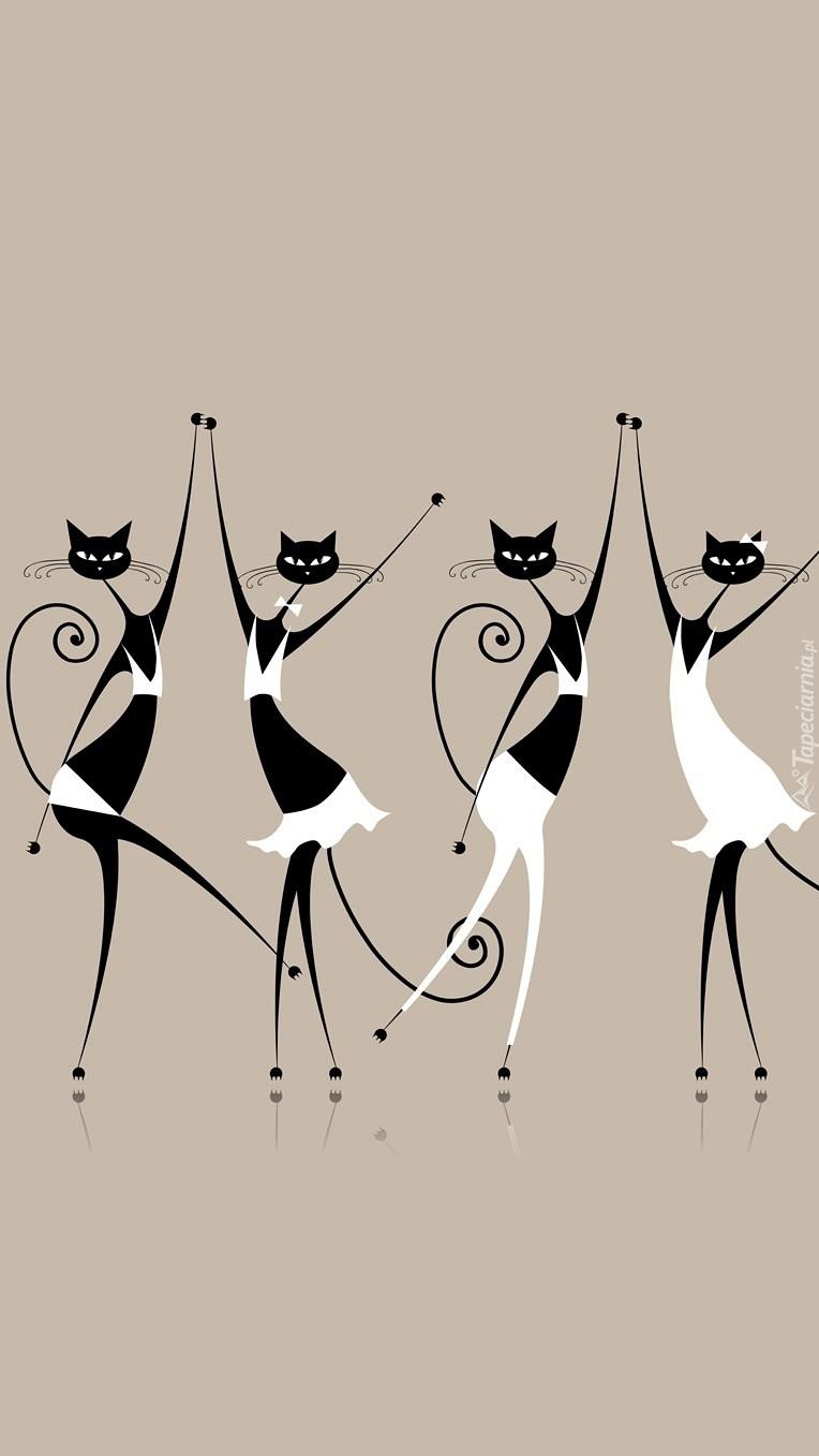 Kotki w tańcu