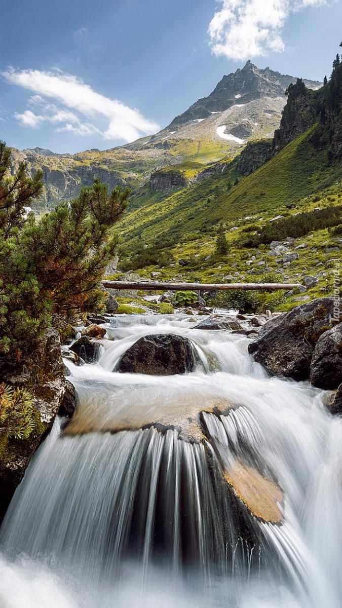 Krzewy i kamienie nad rzeką