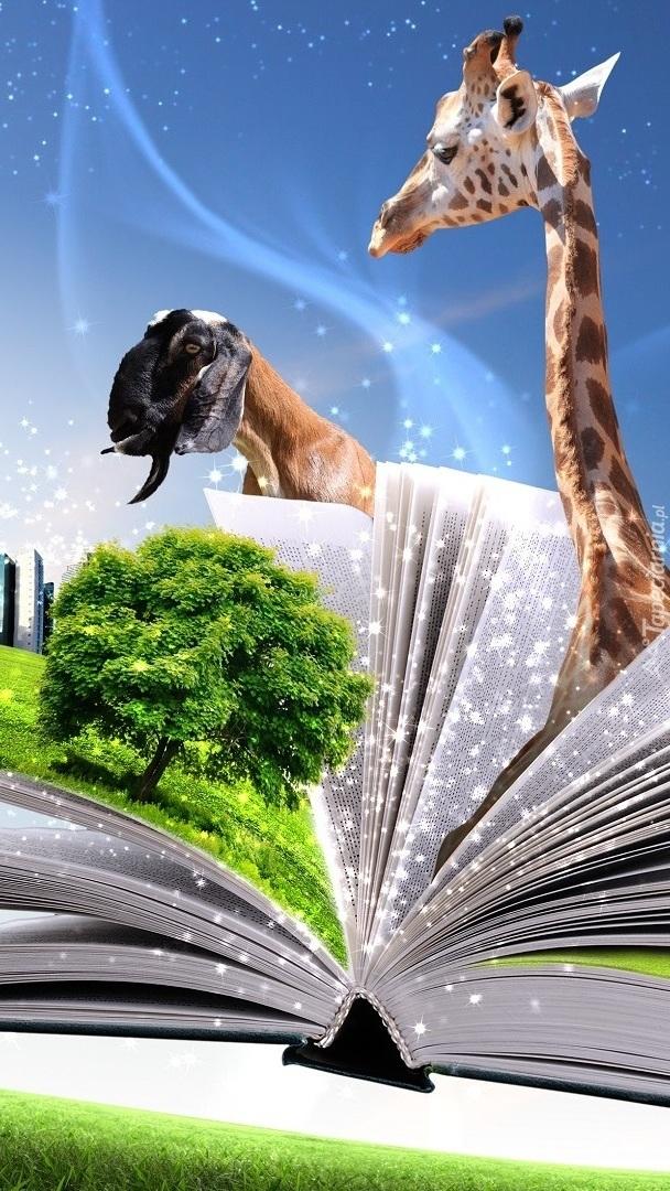 Książka o zwierzętach
