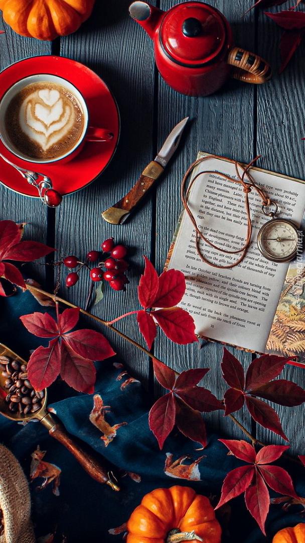 Książka obok bordowych liści i dyni