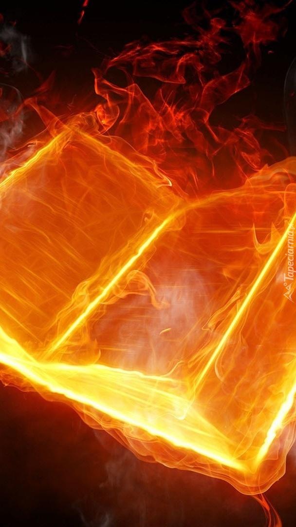 Książka w płomieniach