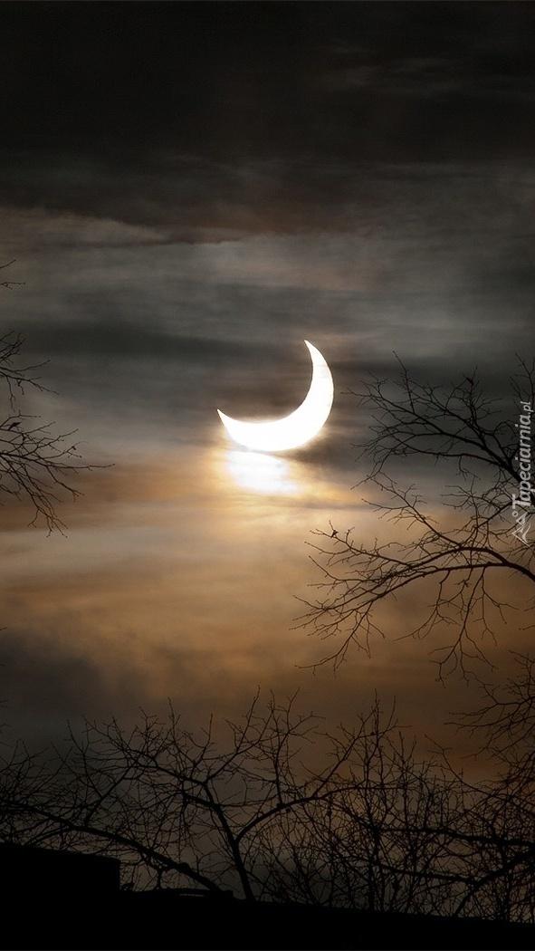 Księżycowa kolebka