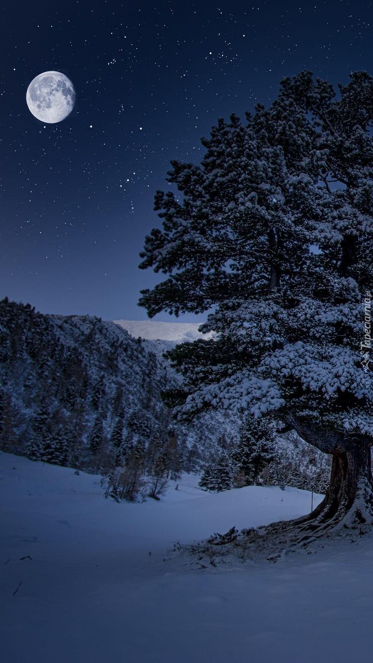 Księżycowa noc w górach