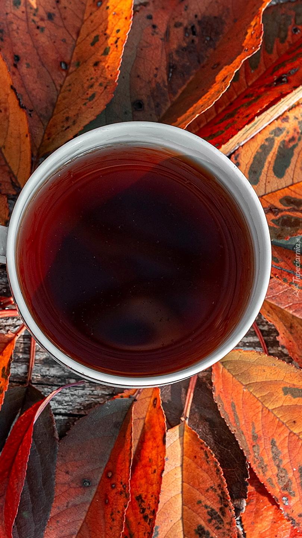 Kubek herbaty wśród jesiennych liści