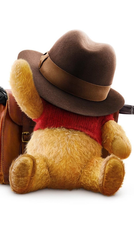 Kubuś Puchatek pod kapeluszem