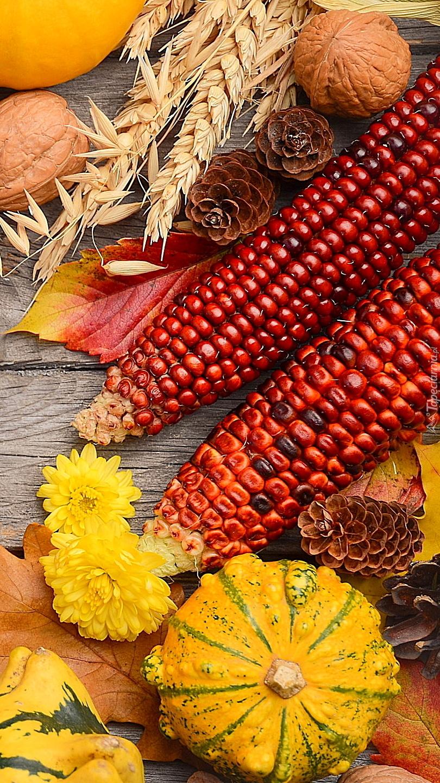 Kukurydza i dynie