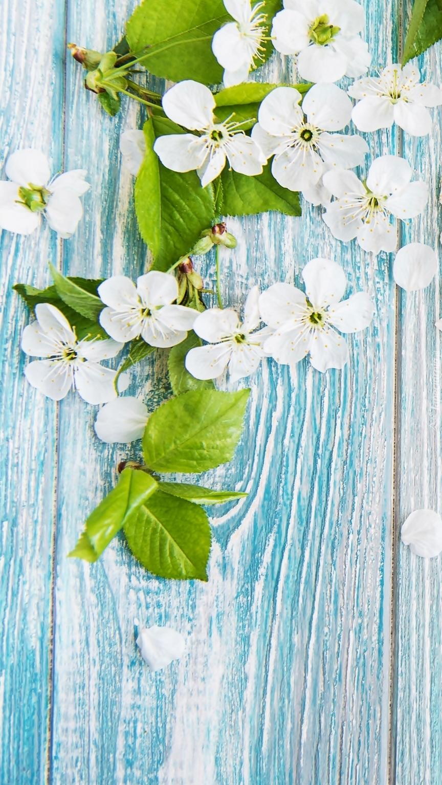 Kwiatki na deskach