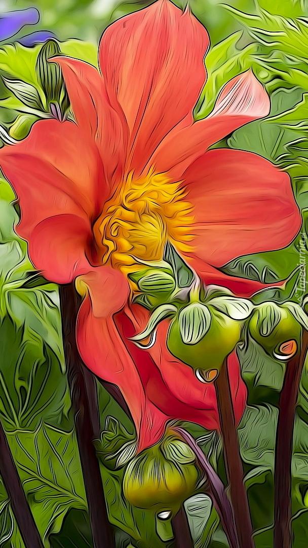 Kwiaty dalii w grafice