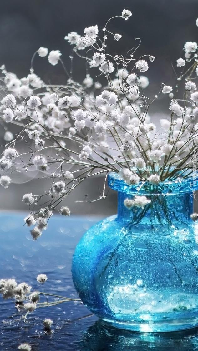 Kwiaty gipsówki w szklanym wazoniku