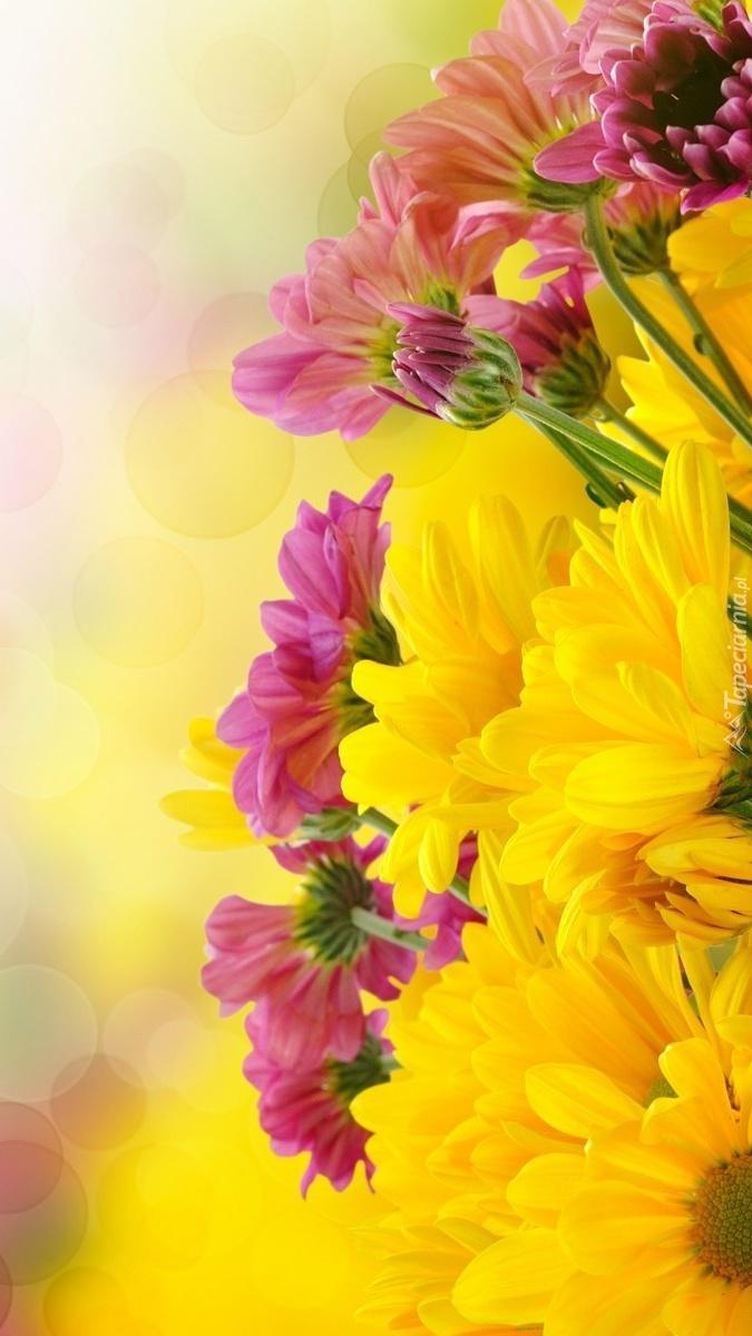 Kwiaty na miły dzień