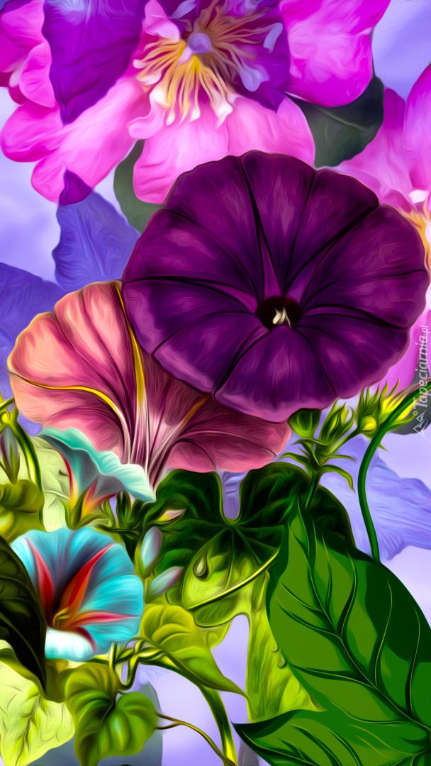 Kwiaty powoju