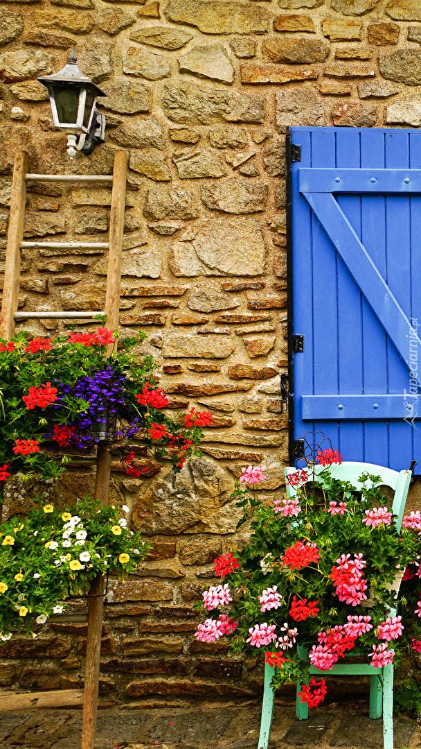 Kwiaty przy kamiennej ścianie domu