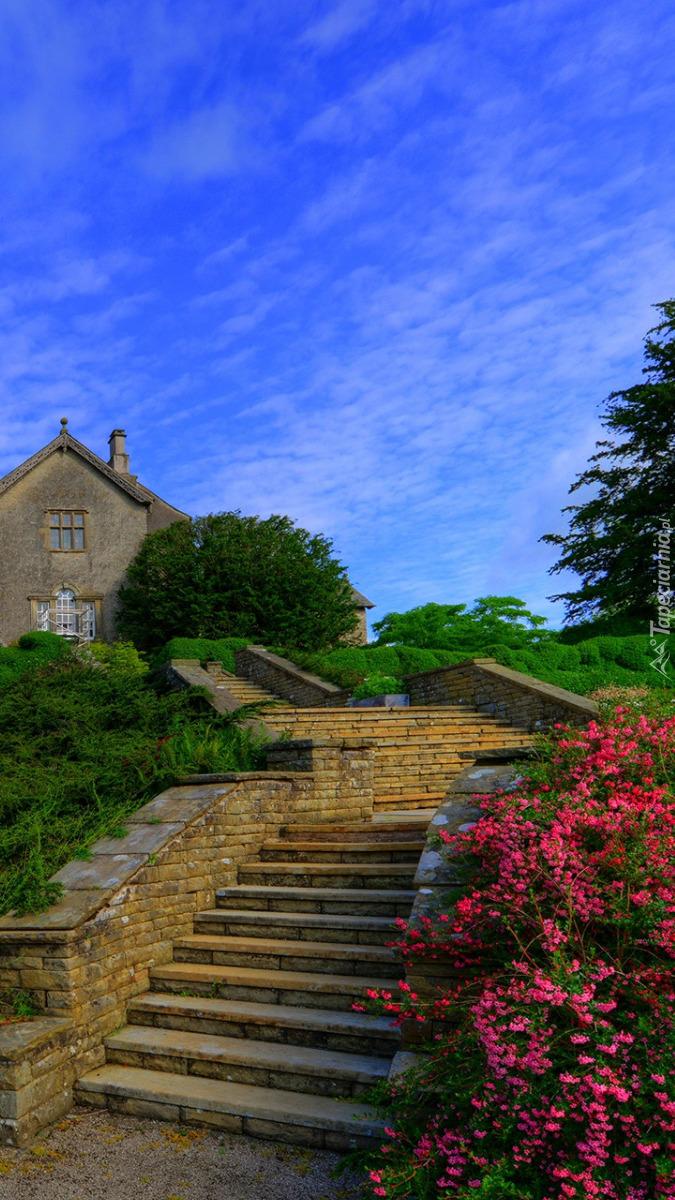 Kwiaty przy schodach do zamku Sizergh
