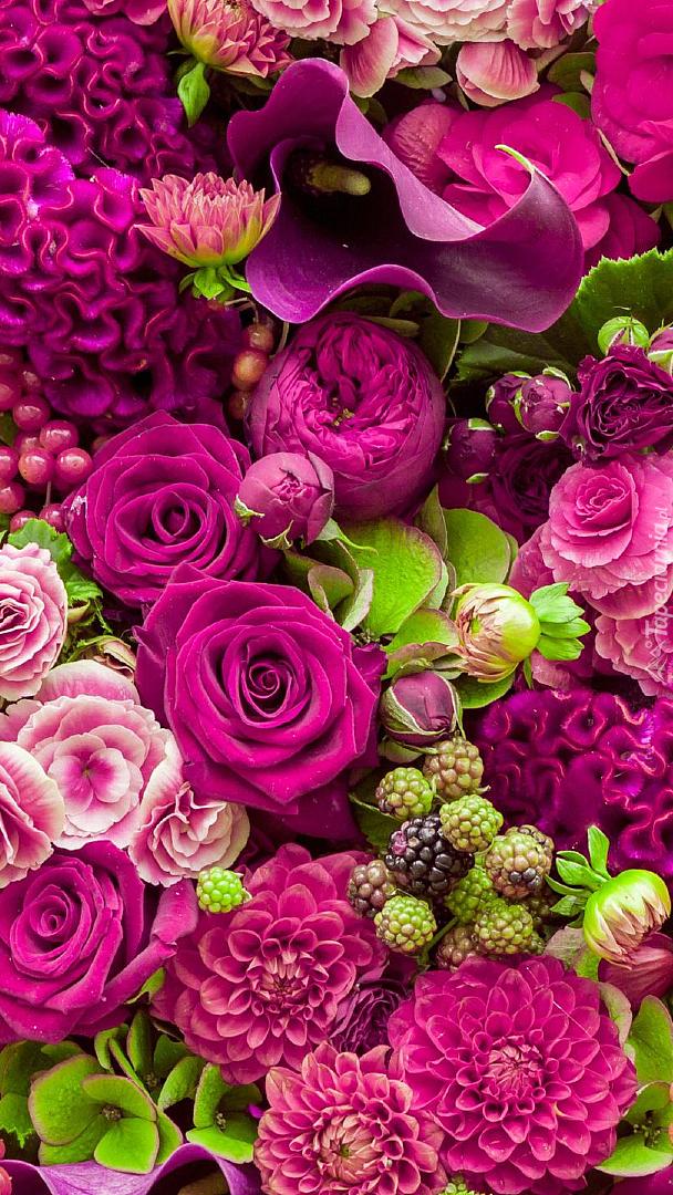 Kwiaty w kolorze ciemnego różu