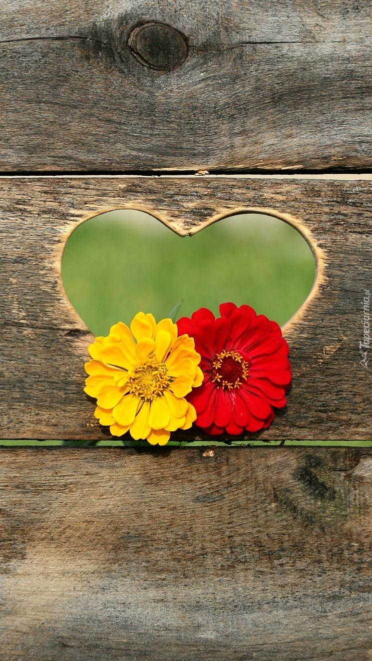 Kwiaty w sercu