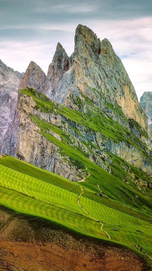 Łąki na zboczach gór