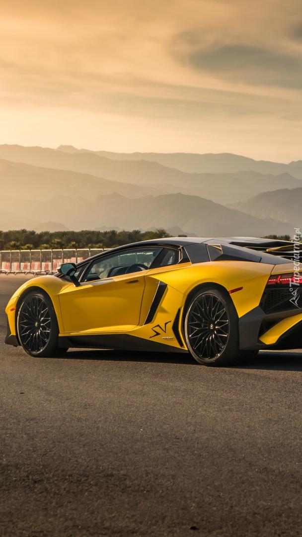Lamborghini Aventador SVJ bokiem