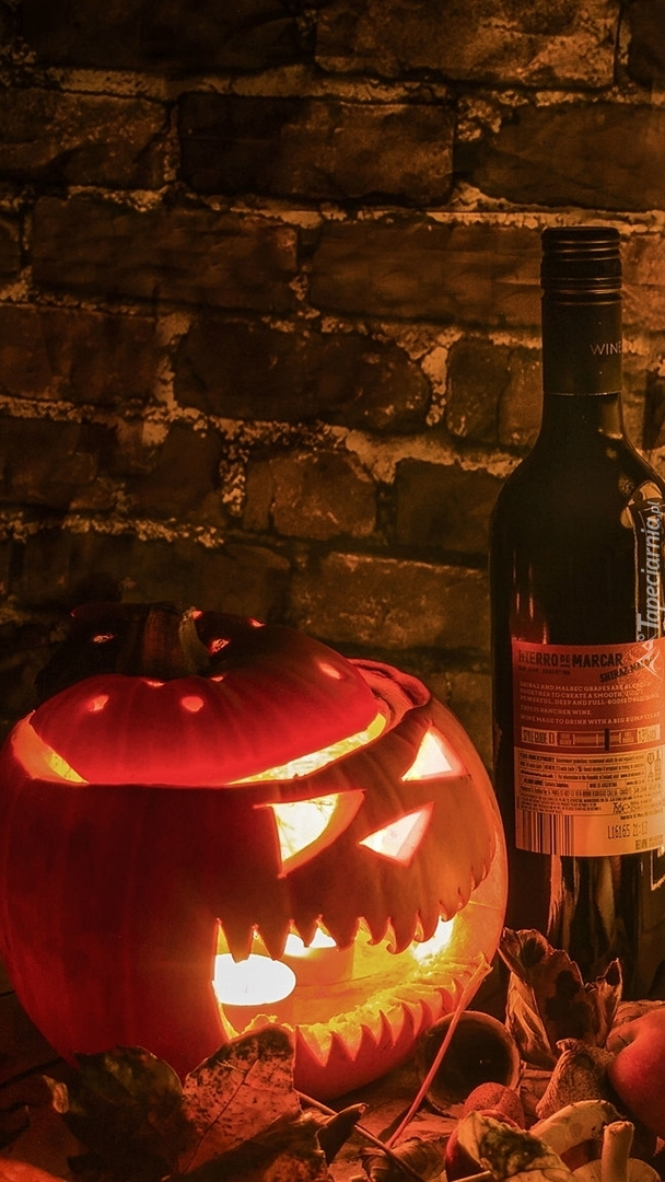 Lampion z dyni i butelka wina