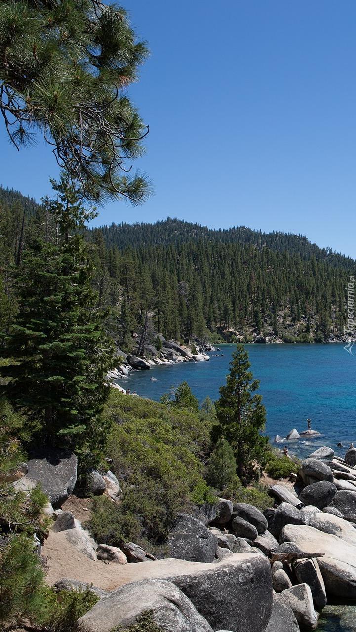Las i skały nad jeziorem