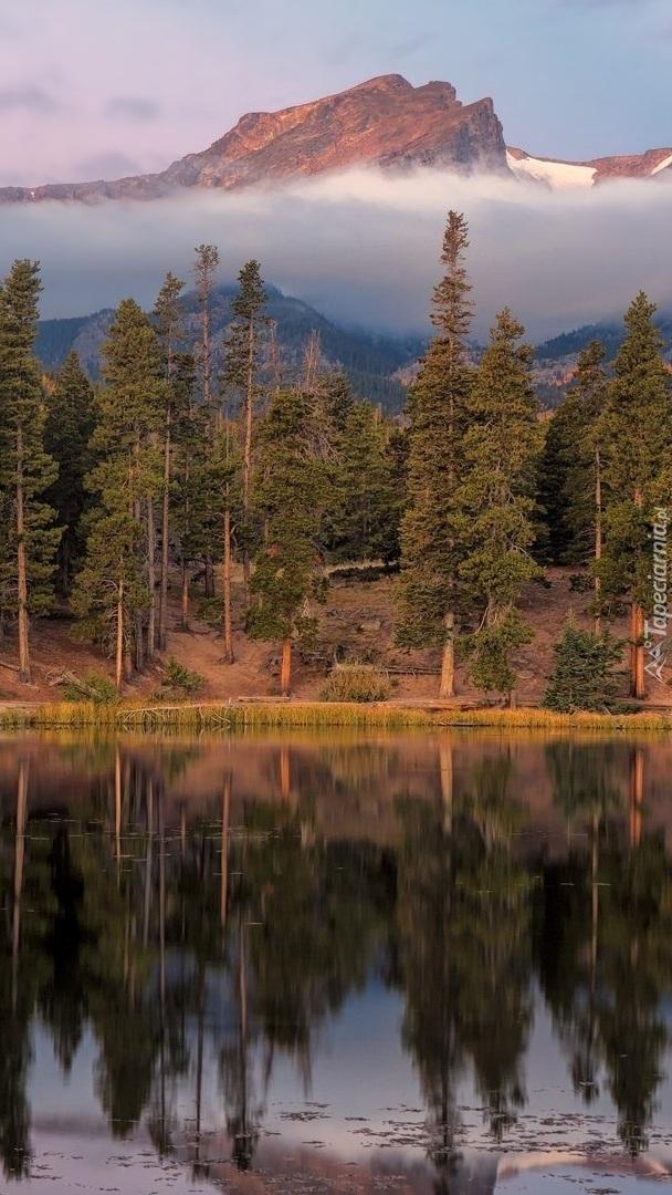 Las nad jeziorem i mgła nad górami