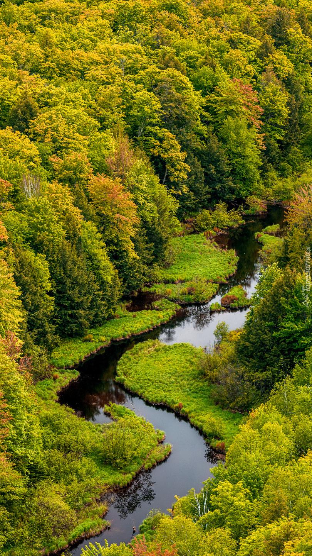 Lasy i rzeka z lotu ptaka