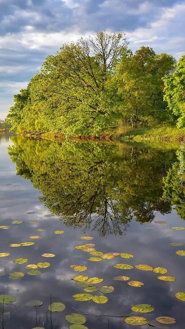 Lato nad rzeką