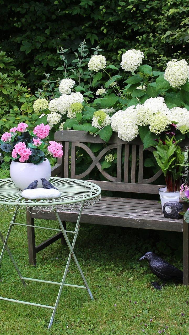 Ławeczka i stolik przy krzewie kaliny koralowej