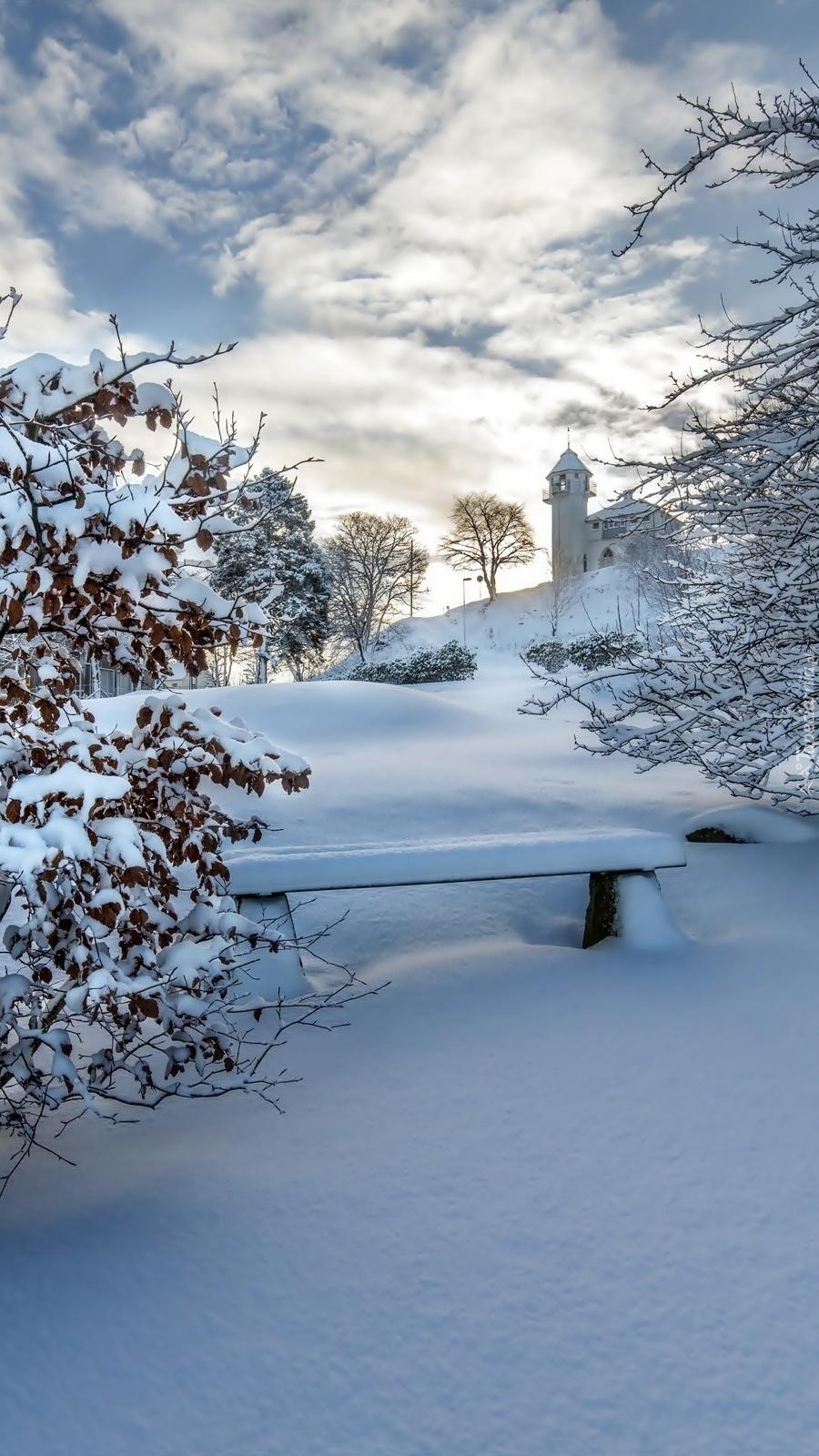 Ławka między drzewami zimą