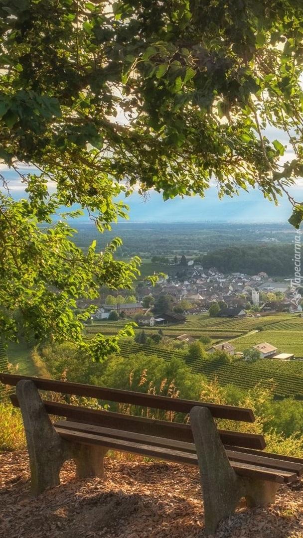 Ławka na wzgórzach Kaiserstuhl